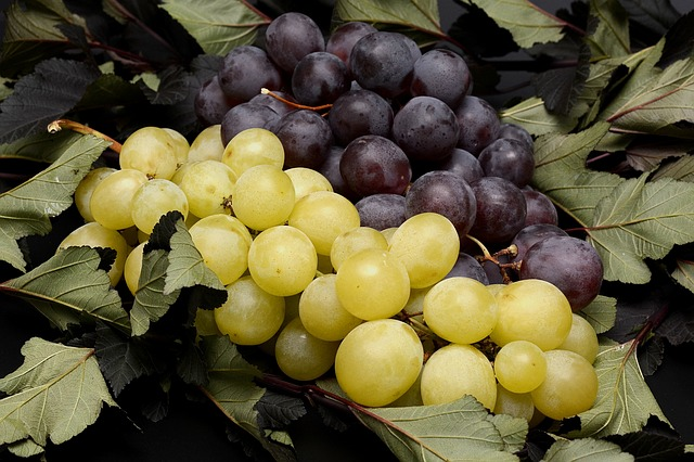 grapes-2792730_640